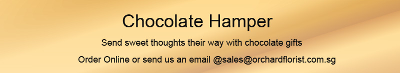 chocolate-hampers-banner - final.jpg