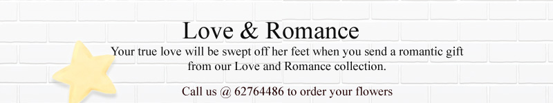 love&-romace-small-banner.jpg